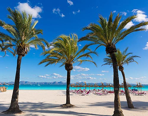 Holiday in Mallorca