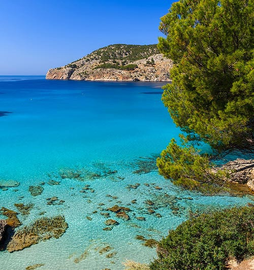 Beach Paradise in Mallorca
